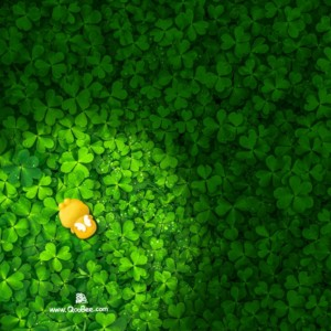 Qoobee Hiding Among Green Leaves Wallpaper